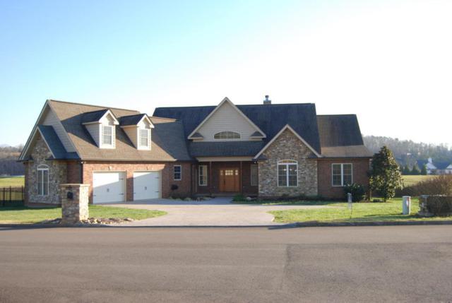 9618 Gunnies Drive, Kodak, TN 37764 (#1033648) :: SMOKY's Real Estate LLC