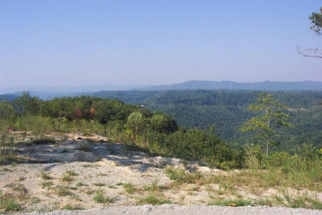 Mcclouds Tr, LaFollette, TN 37766 (#1033898) :: Billy Houston Group