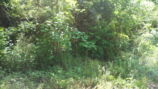 1310 Memory Lane, Knoxville, TN 37914 (#1033930) :: Billy Houston Group