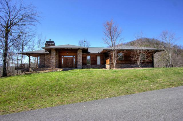 1441 Mountain Ash Way, Sevierville, TN 37876 (#1034139) :: Billy Houston Group