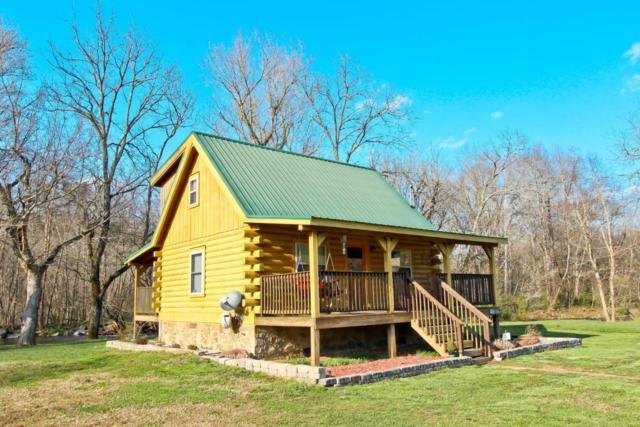 187 Wilton Springs Rd, Newport, TN 37821 (#1034173) :: SMOKY's Real Estate LLC