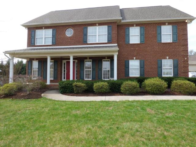 1317 Amber Glades Lane, Knoxville, TN 37922 (#1034178) :: Billy Houston Group