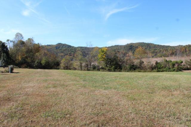 Lot 10 Autumn Woods Lane, Sevierville, TN 37862 (#1034195) :: The Terrell Team