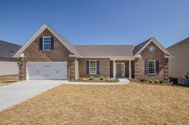 Lot 44 Greystoke Lane, Knoxville, TN 37912 (#1034212) :: Billy Houston Group