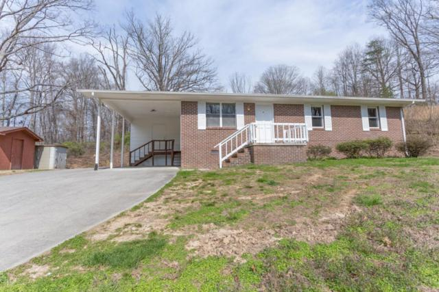 252 Old Clinton Hwy, Powell, TN 37849 (#1034245) :: Billy Houston Group