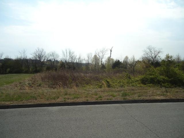 Lot 9-R Fox Meadows Blvd, Sevierville, TN 37862 (#1034290) :: The Terrell Team