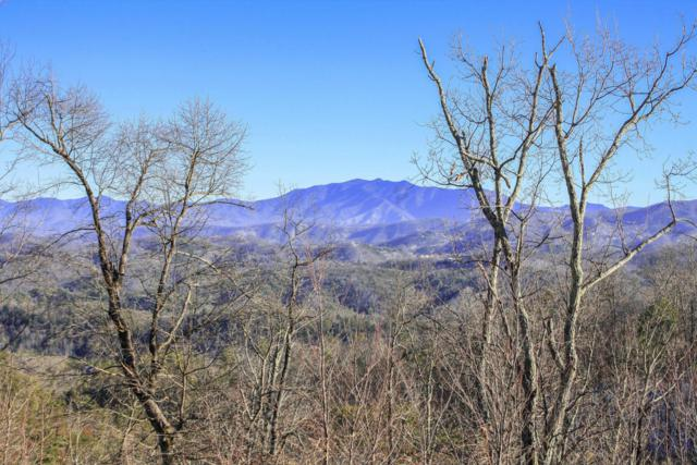Laurel Cove Trail, Sevierville, TN 37876 (#1034292) :: The Terrell Team