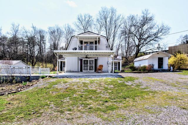 102 W Bullrun Valley Drive, Heiskell, TN 37754 (#1034299) :: Billy Houston Group