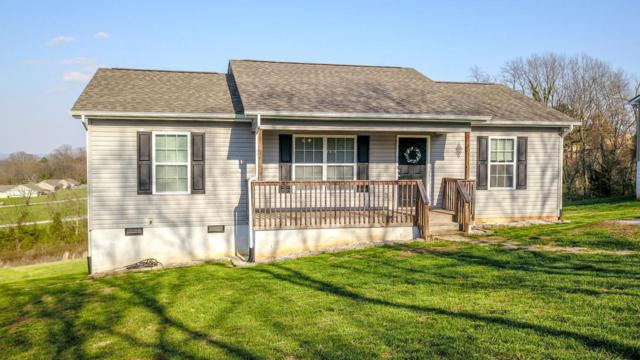 107 Tucker Lane, Friendsville, TN 37737 (#1034315) :: SMOKY's Real Estate LLC