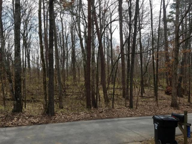 Parkbrook (Lot 60) Drive, Friendsville, TN 37737 (#1034324) :: SMOKY's Real Estate LLC