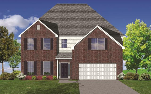 12521 Cotton Blossom Lane, Knoxville, TN 37934 (#1034431) :: Billy Houston Group