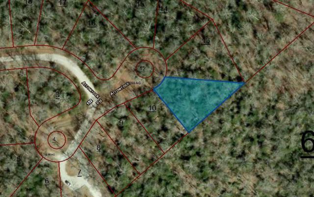 159 Arrow Rock Drive, Crossville, TN 38558 (#1034451) :: Shannon Foster Boline Group