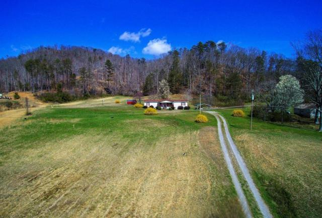 146 Harness Hollow Lane, Briceville, TN 37710 (#1034516) :: Realty Executives Associates