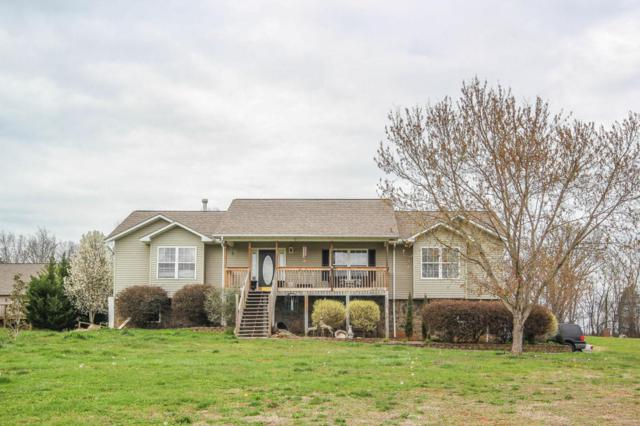 1779 Tahoe Tr, Sevierville, TN 37876 (#1034615) :: Billy Houston Group
