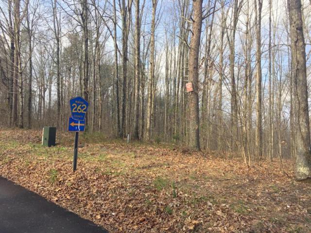 County Road 260, Niota, TN 37826 (#1034899) :: Billy Houston Group