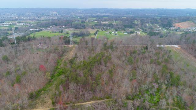 2918 Mill Rd, Knoxville, TN 37924 (#1034983) :: Billy Houston Group