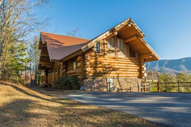 427 Coyote Rd, Gatlinburg, TN 37738 (#1035030) :: Billy Houston Group