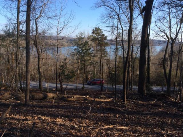 Pin Oak Rd, Rockwood, TN 37854 (#1035050) :: Billy Houston Group