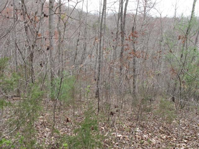 Big Creek Lane, LaFollette, TN 37766 (#1035425) :: Billy Houston Group