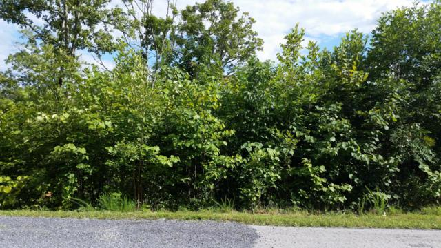Lot 43 Stone Bridge Drive, Dandridge, TN 37725 (#1035530) :: Billy Houston Group