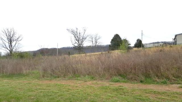 Pulliam Dr & Morris Rd, Decatur, TN 37322 (#1035572) :: Billy Houston Group