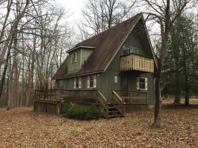 511 Running Deer, Crab Orchard, TN 37723 (#1035879) :: Billy Houston Group