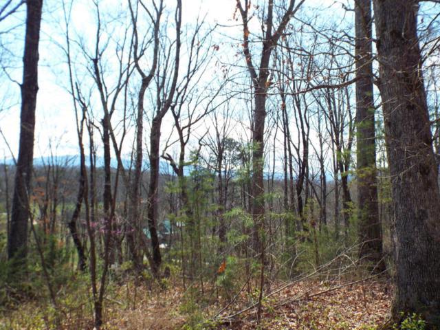 Lot 4 Meadow Brooke Way, Cosby, TN 37722 (#1035880) :: Billy Houston Group