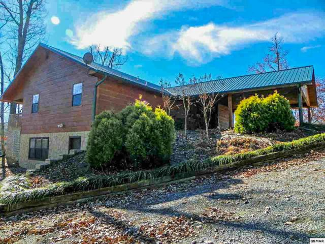 3760 Ivy Way, Sevierville, TN 37876 (#1035913) :: Billy Houston Group