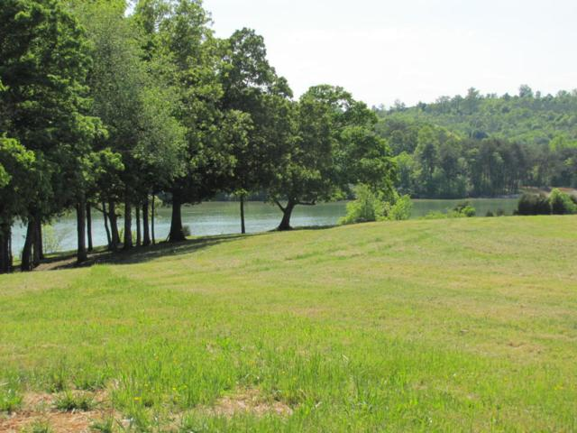 105 Bakers Point, Greenback, TN 37742 (#1036063) :: Billy Houston Group
