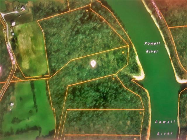 Jones Ridge Rd, Speedwell, TN 37870 (#1036221) :: Billy Houston Group