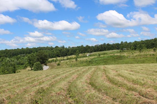 Lot 3 Nichol Creek Drive, Jamestown, TN 38556 (#1036230) :: Shannon Foster Boline Group