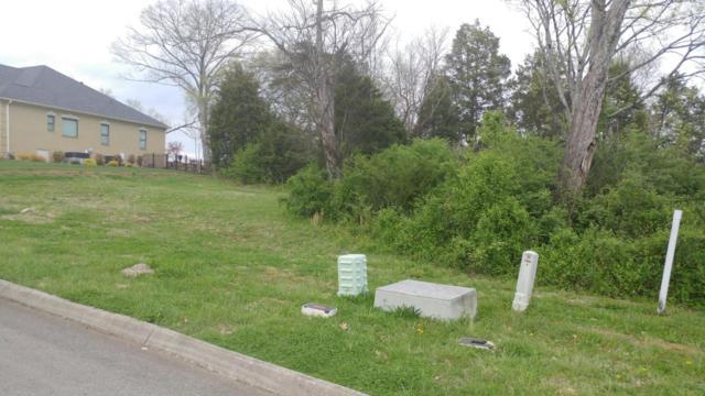 12142 Fredericksburg Blvd, Knoxville, TN 37922 (#1036231) :: Billy Houston Group