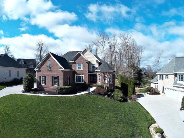 1015 Oak Chase Blvd, Lenoir City, TN 37772 (#1036285) :: Billy Houston Group