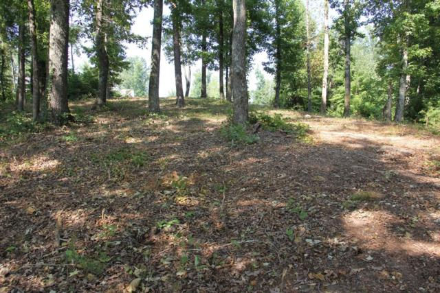 Lot 20 Spring Crossing Drive, Spring City, TN 37381 (#1036287) :: Billy Houston Group