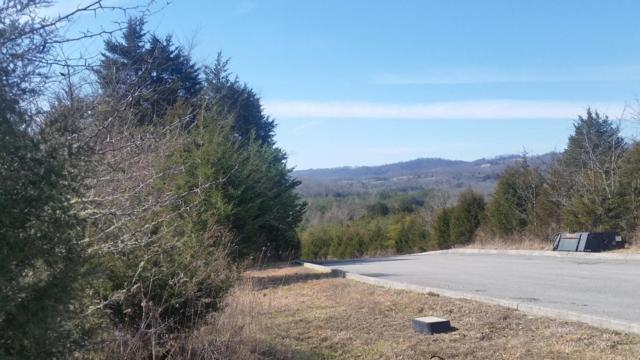 Lot 177 Links Court, Tazewell, TN 37879 (#1036393) :: Billy Houston Group