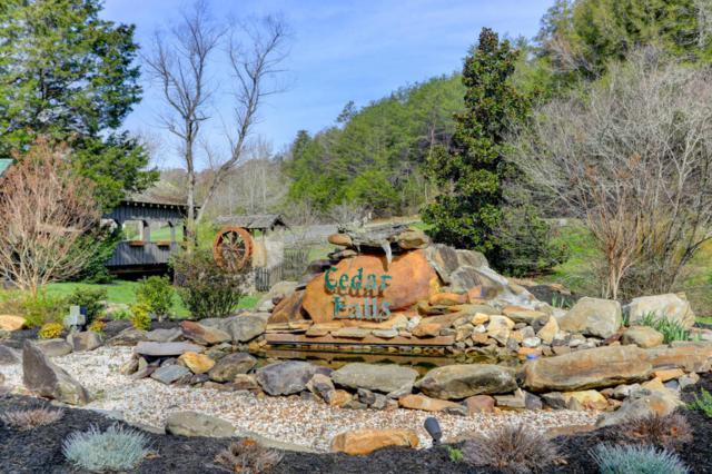 Cedar Falls Way, Sevierville, TN 37862 (#1036398) :: Billy Houston Group