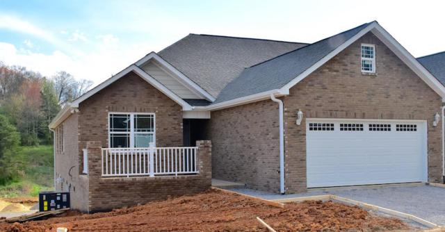 1919 Canyon Rd, Sevierville, TN 37862 (#1036452) :: Billy Houston Group