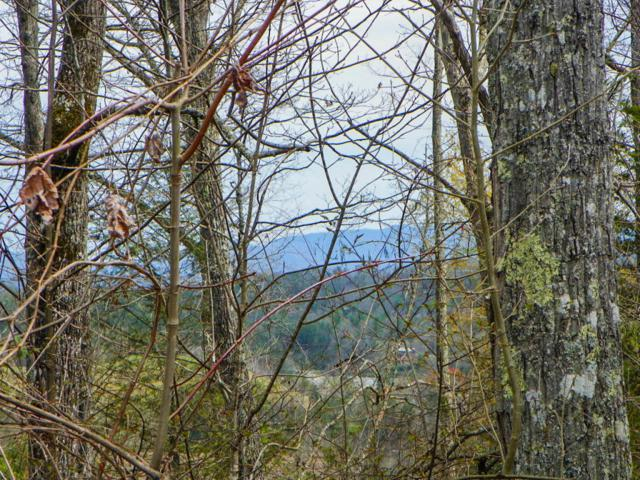 Lot# 1 Shady Grove Road, Sevierville, TN 37876 (#1036478) :: Billy Houston Group