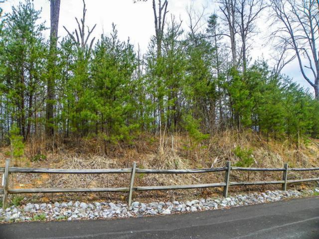 Lot# 6 Shadyview Ridge Road, Sevierville, TN 37876 (#1036492) :: The Terrell Team
