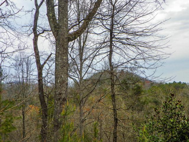 Lot# 2 Shadyview Ridge Road, Sevierville, TN 37876 (#1036498) :: The Terrell Team