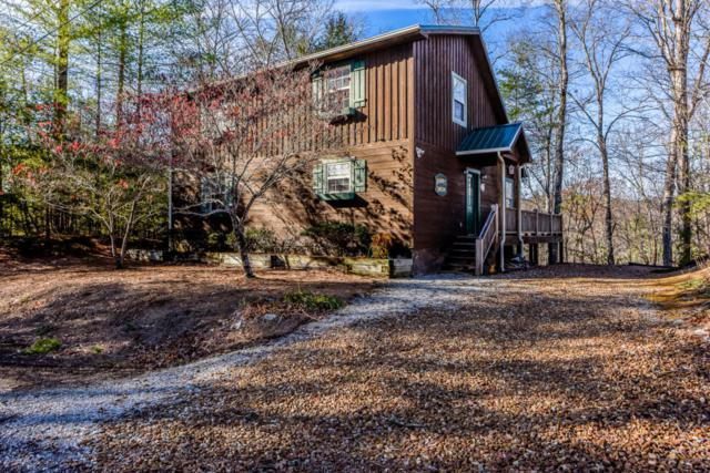 193 Cold Springs Trace, Townsend, TN 37882 (#1036650) :: Billy Houston Group