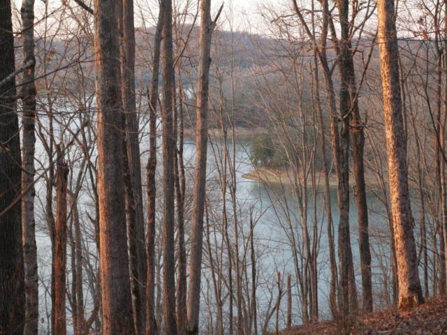 Tumbling Run Estates, Maynardville, TN 37807 (#1036733) :: Billy Houston Group