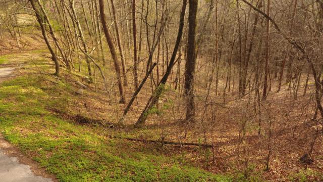 Oak Hill Drive, Seymour, TN 37865 (#1036823) :: Billy Houston Group