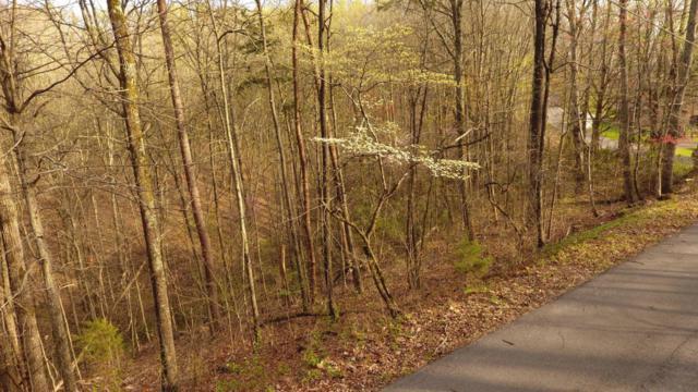 Smoky Mountain View Drive, Seymour, TN 37865 (#1036825) :: Billy Houston Group