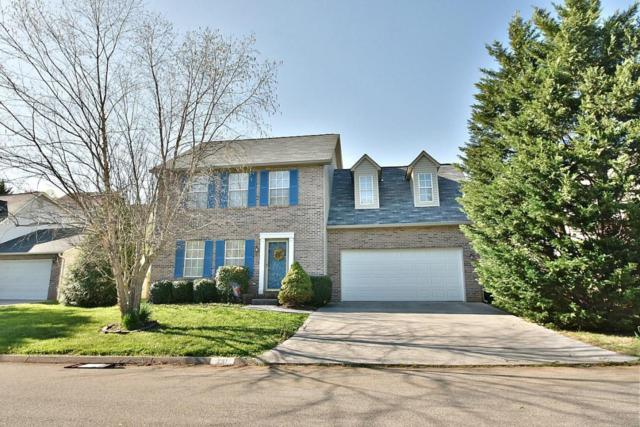 741 Colony Village Way, Knoxville, TN 37923 (#1036841) :: Billy Houston Group