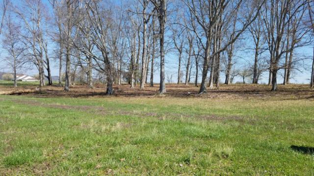 Wild Pear Tr, Dandridge, TN 37725 (#1036854) :: Shannon Foster Boline Group