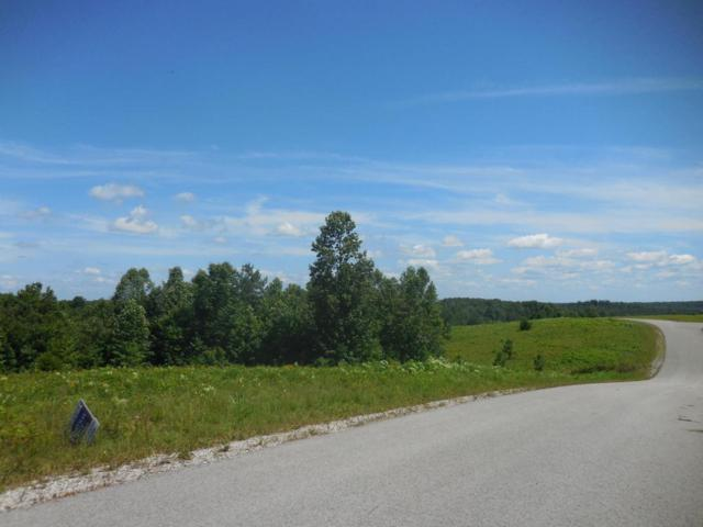 Vista View Pwky Lot 61, Jamestown, TN 38556 (#1037306) :: Billy Houston Group