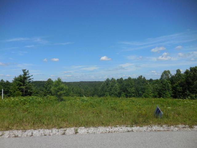 Vista View Pwky Lot 60 Pkwy, Jamestown, TN 38556 (#1037307) :: Billy Houston Group