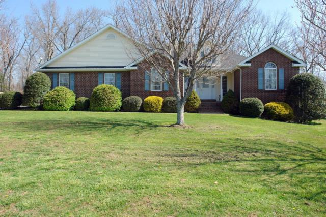 199 Wild Rose Drive, Crossville, TN 38555 (#1037357) :: Shannon Foster Boline Group