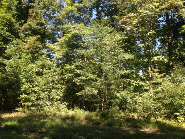 Big Creek Lane, LaFollette, TN 37766 (#1037388) :: Billy Houston Group